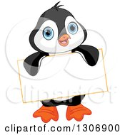 Cute Baby Penguin Holding A Blank Sign