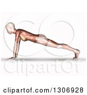 Clipart Of A 3d Anatomical Woman With Visible Muscles Doing Push Ups Or In A Yoga Pose On White Royalty Free Illustration