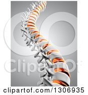 Clipart Of A 3d Human Spine With Discs Highlighted Over Gray Royalty Free Illustration