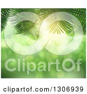 Clipart Of A 3d Background Of Fern Leaves Over Bokeh Light Flares Royalty Free Illustration