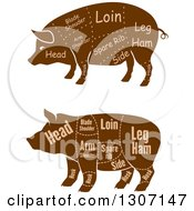 Clipart Of Brown Silhouetted Pigs With Labeled Pork Cuts Royalty Free Vector Illustration