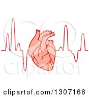 Clipart Of A Human Heart Over An Electrocardiogram Graph Royalty Free Vector Illustration