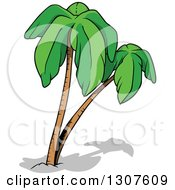 Clipart Of Cartoon Palm Trees And Shadows Royalty Free Vector Illustration by dero