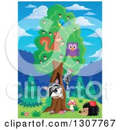 Clipart Of A Raccoon Peeking Out Through A Tree Hollow With Birds An Owl And Squirrel In The Forest Royalty Free Vector Illustration by visekart