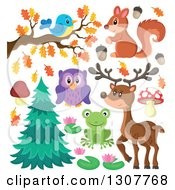 Clipart Of A Cute Forest Blue Bird On An Autumn Branch Squirrel Deer Owl Frog And Plants Royalty Free Vector Illustration by visekart