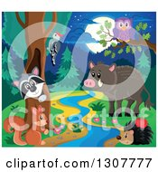 Clipart Of A Raccoon Peeking Out Through A Tree Hollow Woodpecker Owl Squirrel Hedgehog And Boar At A Forest Stream At Night Royalty Free Vector Illustration by visekart