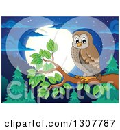 Brown Owl Perched On A Branch Over A Forest Hills And Full Moon At Night