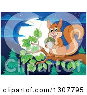 Cute Forest Squirrel Holding An Acorn On A Tree Branch Over A Forest At Night