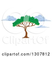 Clipart Of An African Acacia Or Umbrella Tree And Clouds Royalty Free Vector Illustration