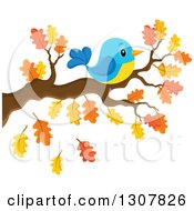 Clipart Of A Chubby Blue And Yellow Bird Resting On An Autumn Oak Branch Royalty Free Vector Illustration by visekart
