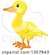 Clipart Of A Cute Yellow Duck Facing Left Royalty Free Vector Illustration by visekart