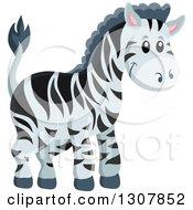 Cute Wild African Zebra