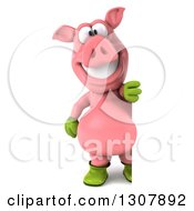 Clipart Of A 3d Full Length Happy Gardener Pig Looking Around A Sign Royalty Free Illustration by Julos