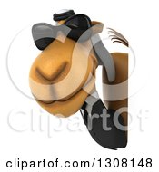 Clipart Of A 3d Arabian Business Camel Wearing Sunglasses And Looking Around A Sign Royalty Free Illustration