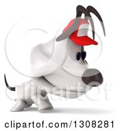 Clipart Of A 3d Sad Jack Russell Terrier Dog Wearing A Baseball Cap And Walking To The Right Royalty Free Illustration