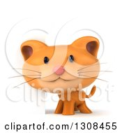 Clipart Of A 3d Ginger Cat Smiling By A Blank Sign Royalty Free Illustration by Julos
