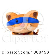 Clipart Of A 3d Super Hero Ginger Cat Over A Sign Royalty Free Illustration by Julos