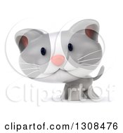 Clipart Of A 3d White And Gray Kitten Smiling Royalty Free Illustration