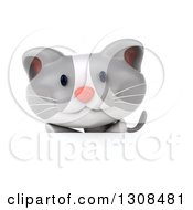 Clipart Of A 3d White And Gray Kitten Over A Sign Royalty Free Illustration