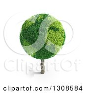3d Planet Earth Tree And Shadow On White