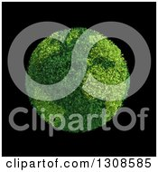 Clipart Of A 3d Leafy Planet Earth Globe On Black Royalty Free Illustration