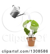 3d Can Watering A Leafy Globe Plant In A Terra Cotta Pot Over White
