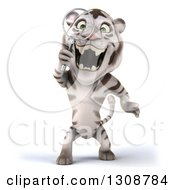 Clipart Of A 3d White Tiger Searching With A Magnifying Glass Royalty Free Illustration