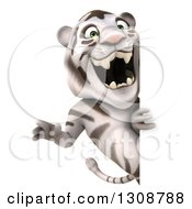Clipart Of A 3d White Tiger Roaring Around A Sign Royalty Free Illustration