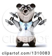 Clipart Of A 3d Bespectacled Doctor Or Veterinarian Panda Working Out Doing Shoulder Presses With Dumbbells Royalty Free Illustration