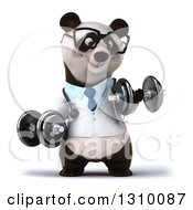 Clipart Of A 3d Bespectacled Doctor Or Veterinarian Panda Working Out Doing Bicep Curls With Dumbbells Royalty Free Illustration