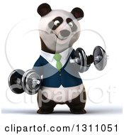Clipart Of A 3d Happy Business Panda Working Out Doing Bicep Curls With Dumbbells Royalty Free Illustration