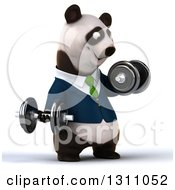 Clipart Of A 3d Happy Business Panda Facing Slightly Right Working Out Doing Bicep Curls With Dumbbells Royalty Free Illustration