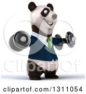 Clipart Of A 3d Happy Business Panda Facing Slightly Right Working Out Doing Lateral Raises With Dumbbells Royalty Free Illustration