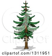 Clipart Of A Cartoon Tall Evergreen Coniferous Tree Royalty Free Vector Illustration