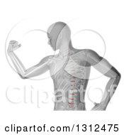 Clipart Of A 3d Medical Anatomical Male Flexing His Biceps With Visible Skeleton On White Royalty Free Illustration