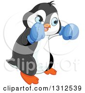 Clipart Of A Cute Male Penguin Wearing Blue Boxing Gloves Royalty Free Vector Illustration