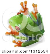 Clipart Of An Aerial View Of A 3d Cute Red Eyed Tree Frog Royalty Free Vector Illustration by dero