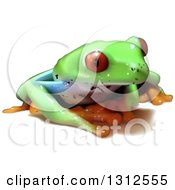 Clipart Of A 3d Cute Red Eyed Tree Frog Royalty Free Vector Illustration by dero