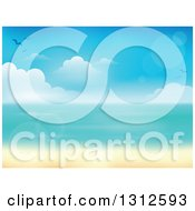 Clipart Of A Tropical Beach With White Sands And The Horizon Over The Ocean With Seagulls Clouds Blur And Flares Royalty Free Vector Illustration by visekart