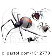 Clipart Of 3d Redback Spiders Royalty Free Vector Illustration
