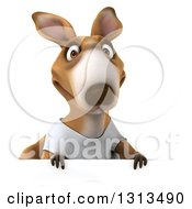 Clipart Of A 3d Kangaroo Wearing A White Tee Shirt Over A Sign Royalty Free Illustration
