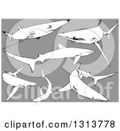 Clipart Of Black And White Swimming Blue Sharks On Gray Royalty Free Vector Illustration