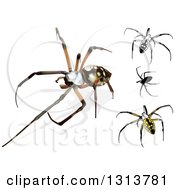 Clipart Of 3d Argiope Spiders Royalty Free Vector Illustration