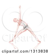 Clipart Of A 3d Pink Anatomical Woman Stretching In A Yoga Pose With Visible Skeleton On White Royalty Free Illustration
