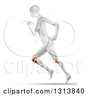 Clipart Of A 3d Anatomical Woman Running With Visible Knee Joint Pain And Leg Bones On White Royalty Free Illustration by KJ Pargeter