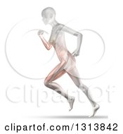 Clipart Of A 3d Anatomical Woman Running With Visible Muscles On White Royalty Free Illustration