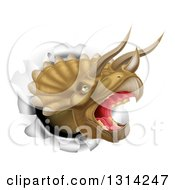 Clipart Of A 3d Roaring Angry Triceratops Dino Head Breaking Through A Wall Royalty Free Vector Illustration