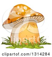 Clipart Of A Mushroom With Grass 2 Royalty Free Vector Illustration by merlinul