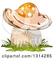 Clipart Of A Mushroom With Grass 3 Royalty Free Vector Illustration by merlinul