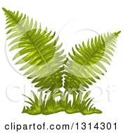 Clipart Of A Lush Fern Plant With Grass Royalty Free Vector Illustration